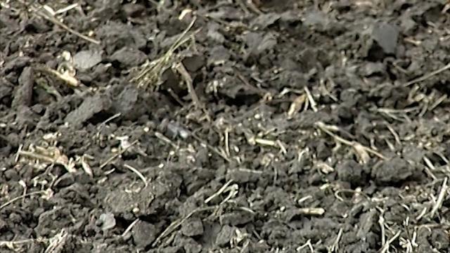Zemljište - osnova svake poljoprivredne grane