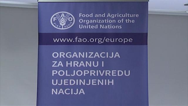 FAO kontroliše oporavak