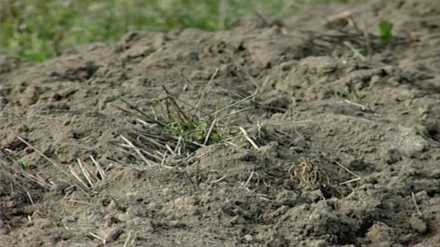 Stara praksa Ministarstva poljoprivrede Republike Srpske