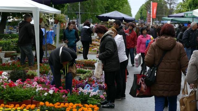 Festival u selu Kusići