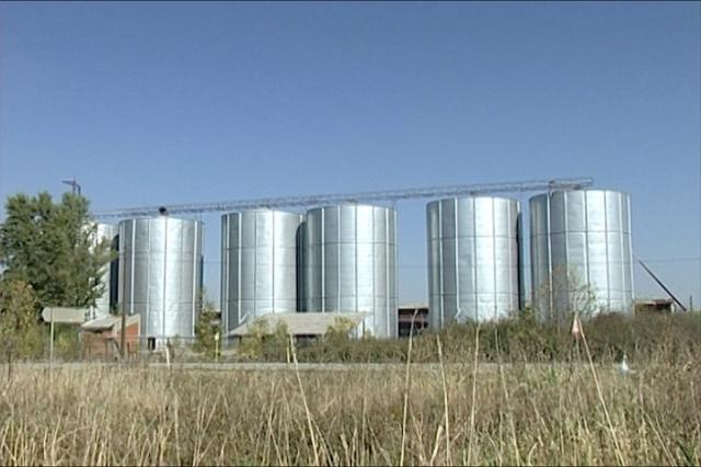 Gde skladištiti pšenicu?