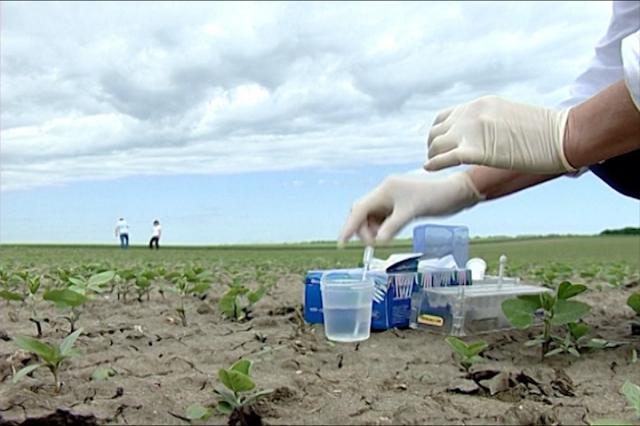 Argumenti protiv GMO