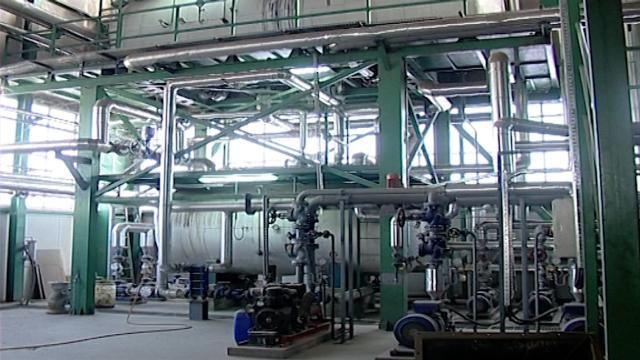 Biomasa je budućnost