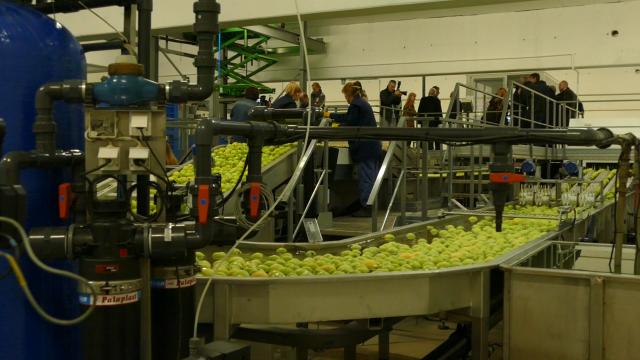 Poljoprivreda kao poluga rasta