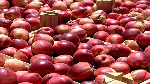 Mraz će uticati i na cene voća