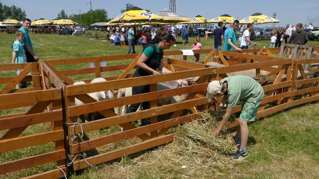 Mladi iz Čuruga promovišu stočarstvo