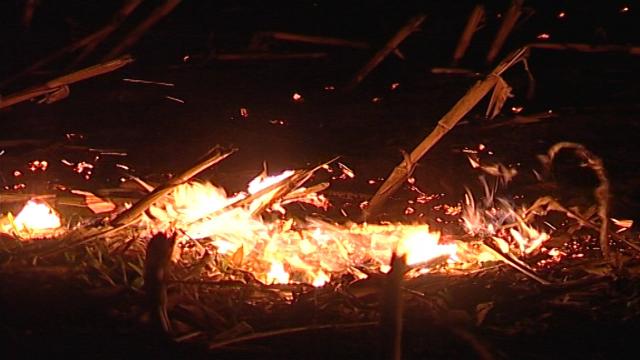 Aktivnosti na zaštiti strnih useva od požara