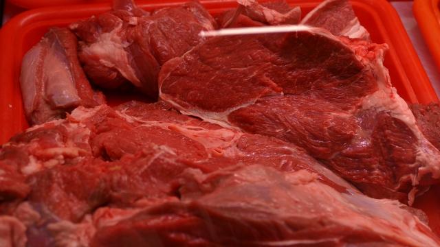 Nije bilo izvoza ni drugih vrsta mesa