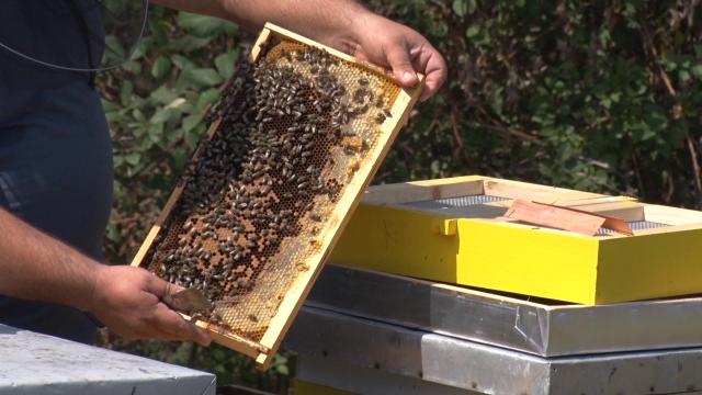 Značajna donacija za pčelare