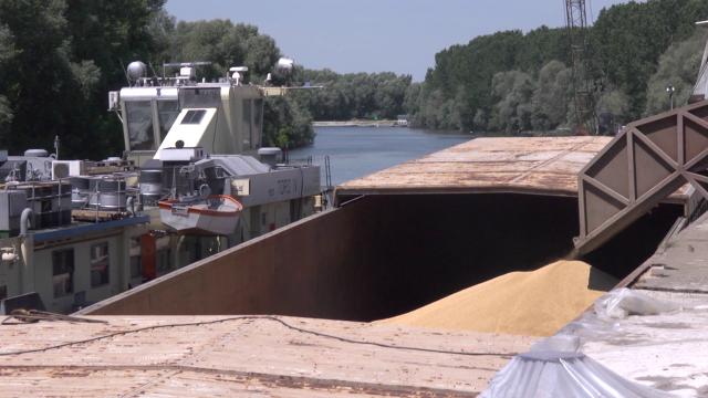 Srbija među 10 najvećih izvoznika žitarica na svetu