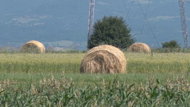 Cilj  projekta povećanje proizvodnje u stočarstvu