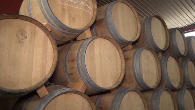 Bogata i duga tradicija u vinogradarstvu i vinarstvu