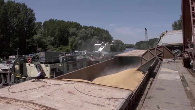 Suša umanjila izvoz žitarica rečnim plovnim putevima
