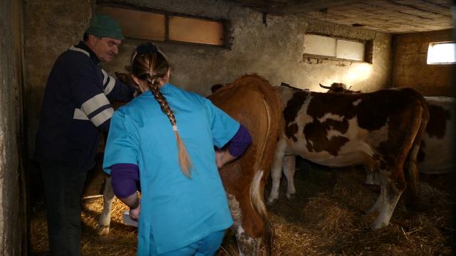 Srpski kozari se suočili sa novom bolešću