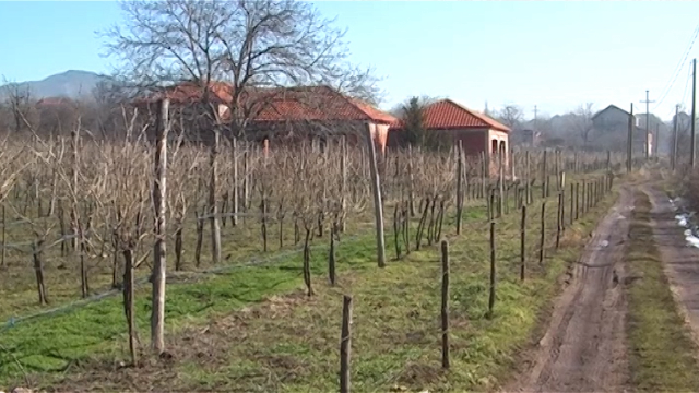 Vinogradarstvom do  razvoja sela