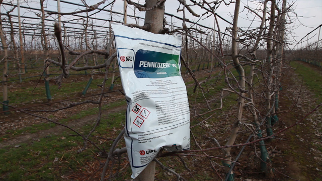 Preporuka Agromarketa za zdrav zasad jabuke
