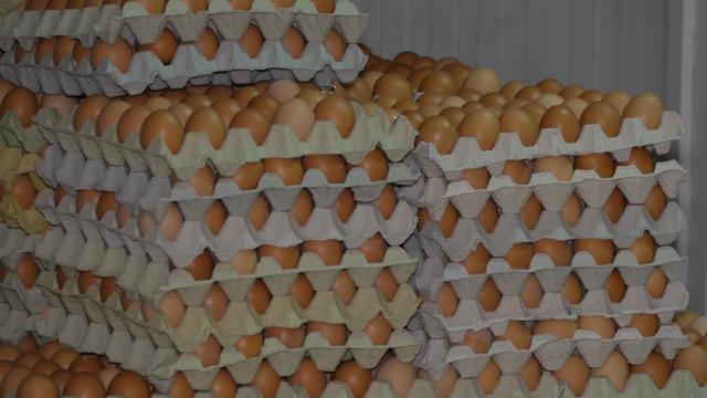 Pojačane kontrole prodajnih mesta jaja, mesa i ribe