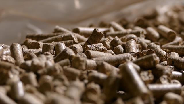 Značajna ulaganja poslednjih godina u eksploataciju biomase