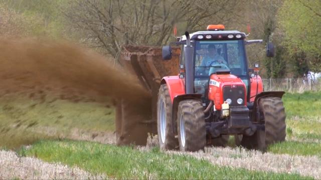 Zelenišno đubrenje za popravljanje stanja zemljišta
