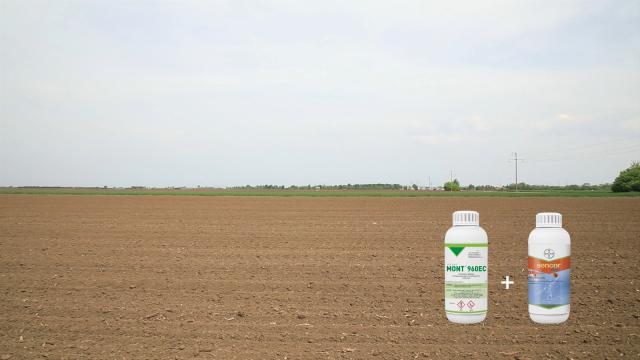 Agromarket ima najširu paletu zaštitnih sredstava za soju