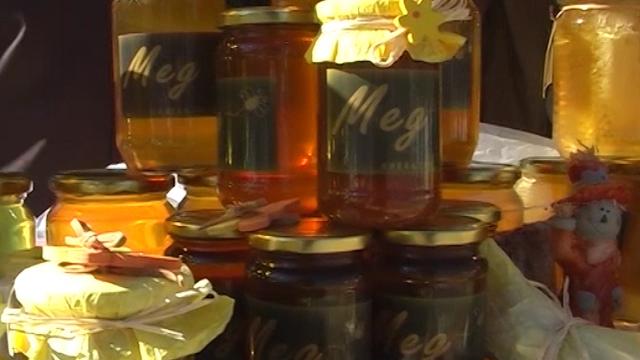 Pčelari se nadaju biće meda i za izvoz