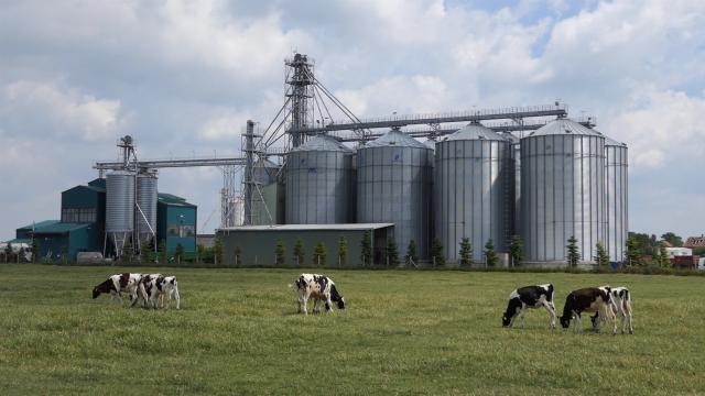 Biogas i organska poljoprivreda šansa za Srbiju