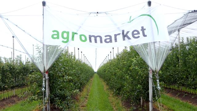 """Dan polja """"Agromarketa"""""""