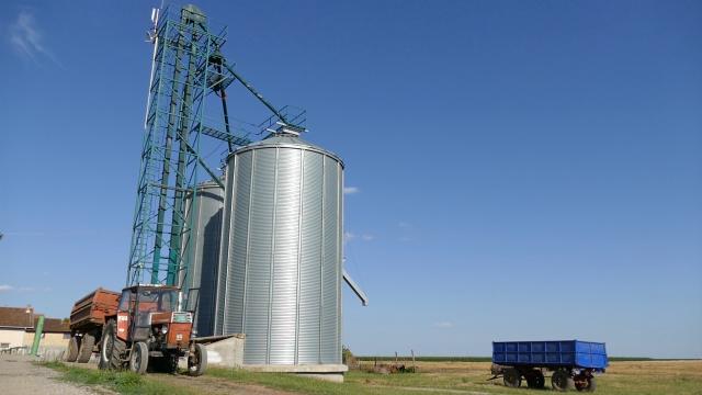Sve teže prodati pšenicu na međunarodnom tržištu