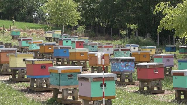 Podsticaji za pčelare