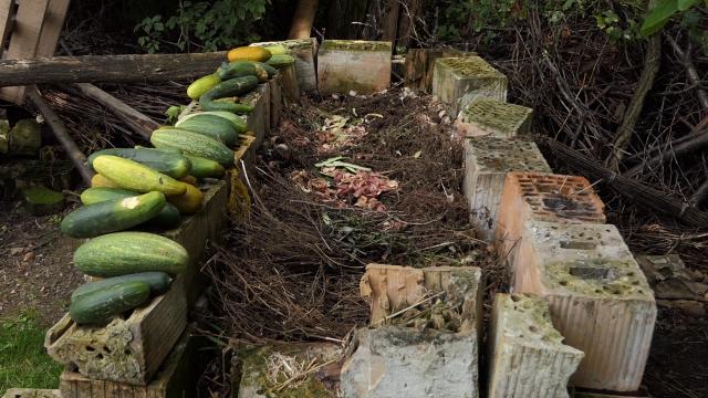 Kvalitetan kompost pun organske materije