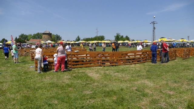 Predstavljen Gospojinski poljo fest