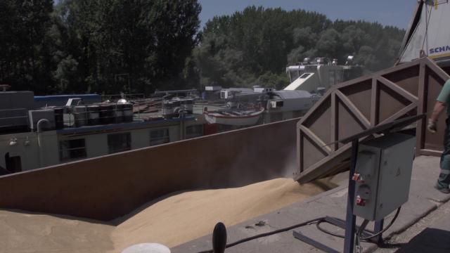 Otvoriti nova tržišta za srpske žitarice