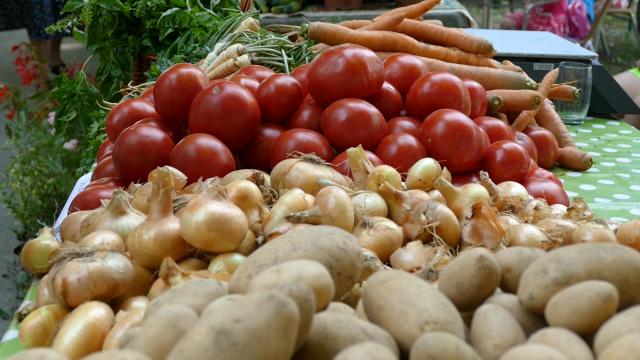 Nagli pad svetskih cena hrane