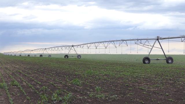 U Srbiji se navodnjava oko 120 hiljada hektara