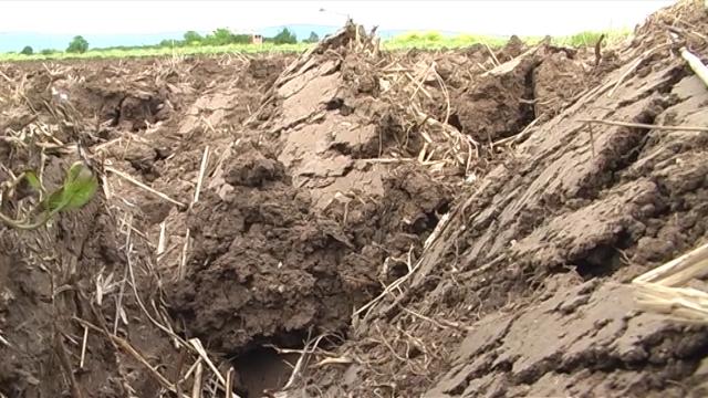 Agrohemijska analiza zemljišta preduslov za uspešnu proizvodnju