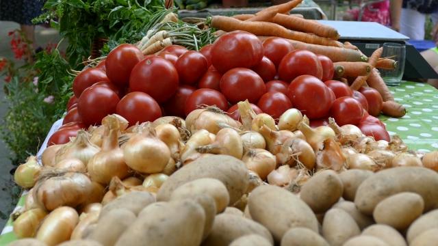 Nepovoljne vremenske prilike smanjile kvalitet povrća