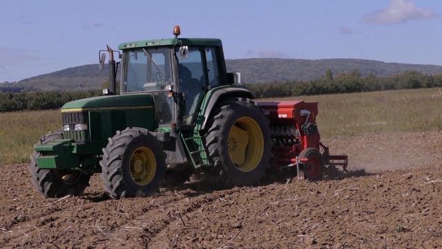 Suva zemlja prolongira setvu pšenice