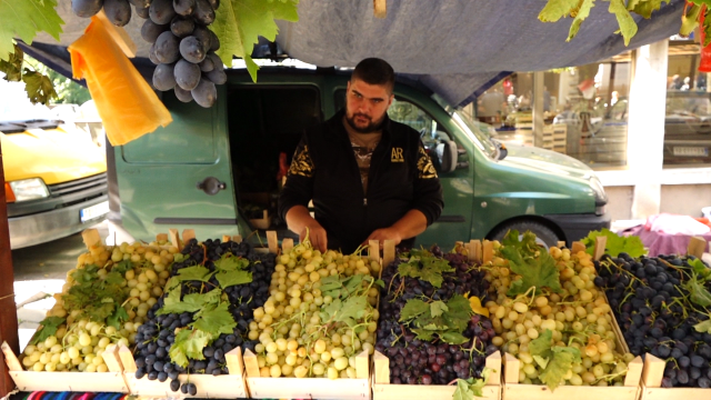 Dobar rod grožđa, cena ispod očekivane