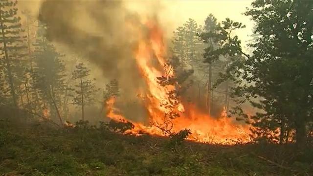 Da li su učestali požari dovoljna opomena?