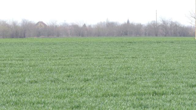 Digitalizacijom u poljoprivredi svaka parcela postaje vidljiva