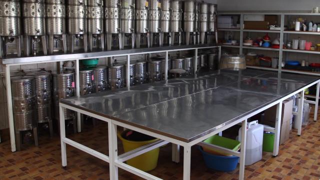 Iz godine u godinu u Srbiji se proizvode sve kvalitetnija vina
