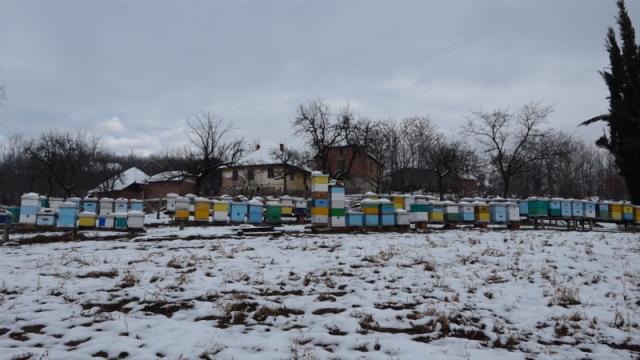 Širenje znanja najvažnije za pčelare