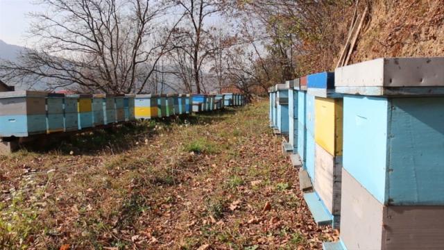 Za bolju zaštitu pčela