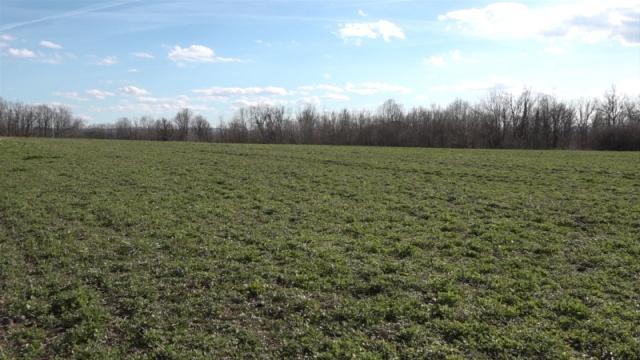 Mladi poljoprivrednici moći će da kupuju zemlju i otplaćuju  20 godina