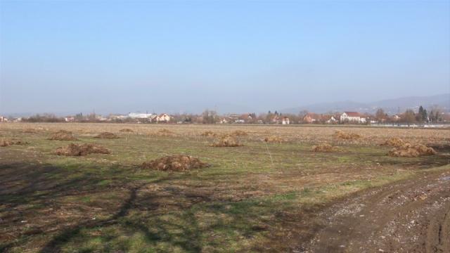 Poljoprivreda važna delatnost za opštinu Obrenovac