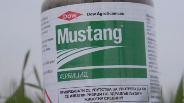 Mustang uspešno suzbija korove, a ne utiče na plodored