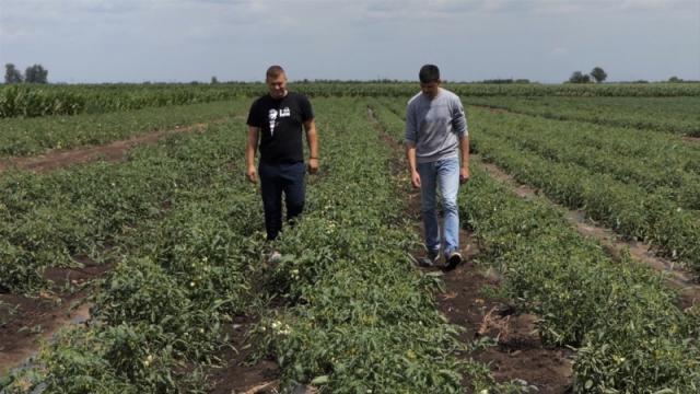 Mere podrške mladim poljoprivrednicima