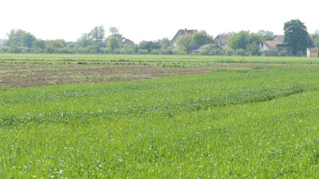 Kada se voda povuče, poljoprivrednici će podvući crtu
