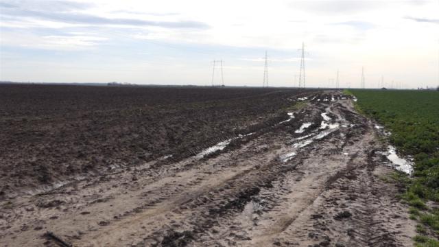 Vremenske prilike negativno uticale na poljoprivredne kulture