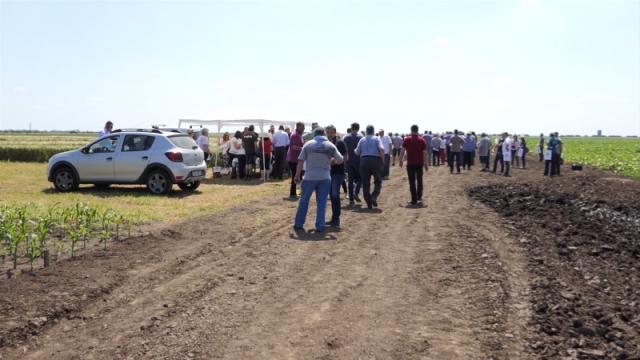 Savetodavci ukazali na neophodne agrotehničke i mere zaštite